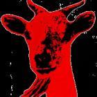 La Chèvre Rouge
