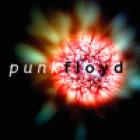 Punk Floyd Jr