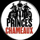 Princes Chameaux